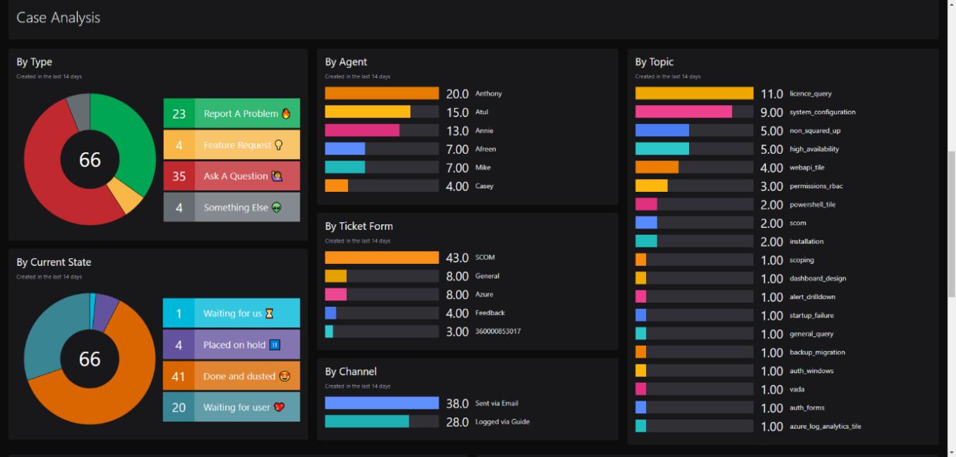 Support Team Case Analysis Dashboard